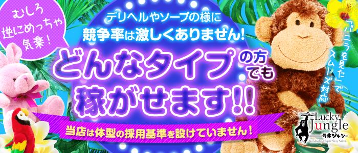 錦糸町ラッキージャングルの体験入店求人画像