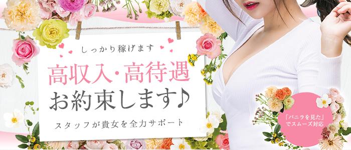 渋谷Lumiere‐ルミエール‐の体験入店求人画像