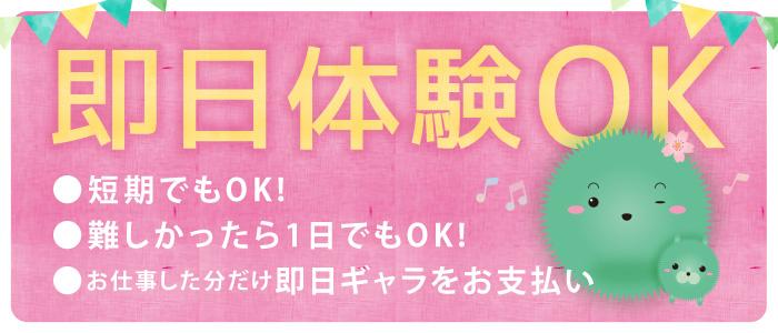 まりも治療院(札幌ハレ系)の体験入店求人画像