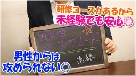 五反田M性感フェチ倶楽部マスカレードの求人動画