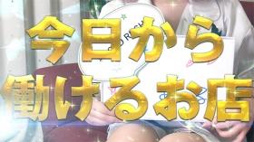 GOLDRUSHのバニキシャ(女の子)動画