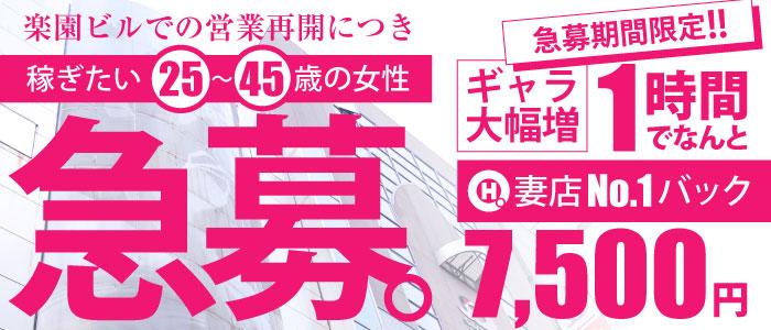 マッティー夫人(札幌ハレ系)の求人画像