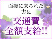 バンビプロモーション マダム事業部