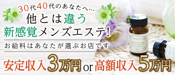 未経験・Men's Season(メンズシーズン)