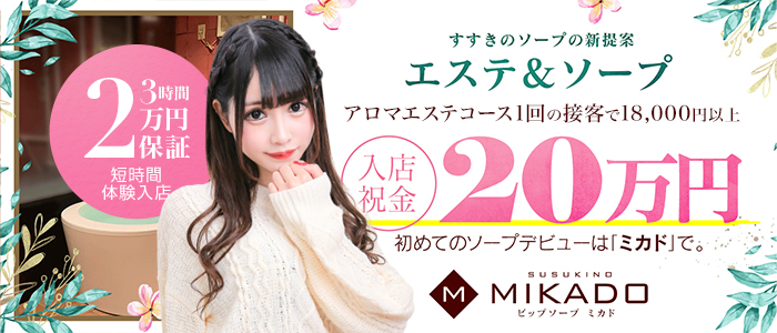 VIP SOAP MIKADOの求人画像
