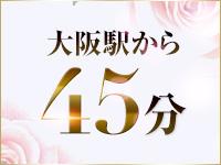 大阪駅から45分