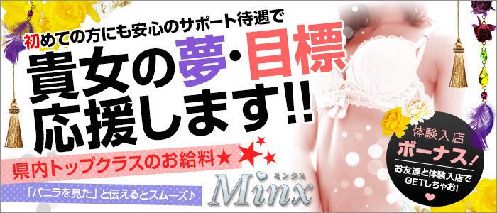 出稼ぎ・Minx