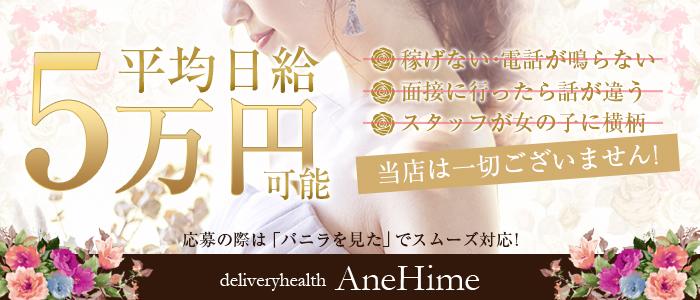 AneHime -アネヒメ-の求人画像