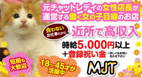 株式会社MJT