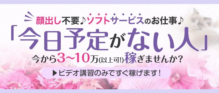 回春性感メンズエステ猫の手名古屋駅/納谷橋の求人画像