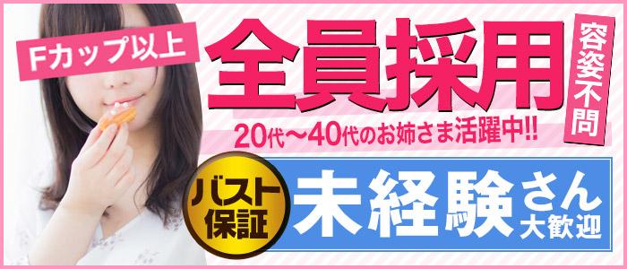 五反田 巨乳爆乳専門店もえりんの未経験求人画像