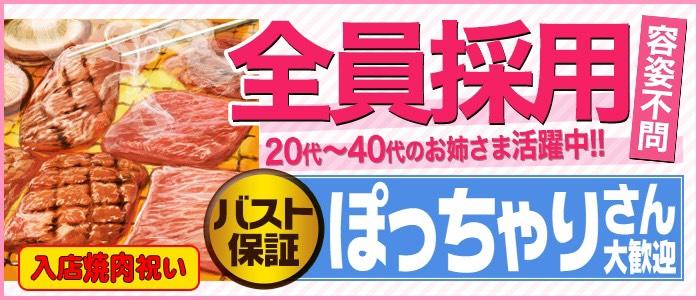 五反田 巨乳爆乳専門店もえりんの体験入店求人画像