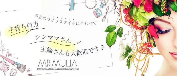 MR.MULIA(ミスタムリア)