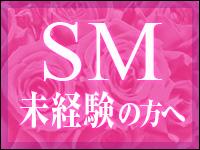 SMは決して難しくありません!!のアイキャッチ画像