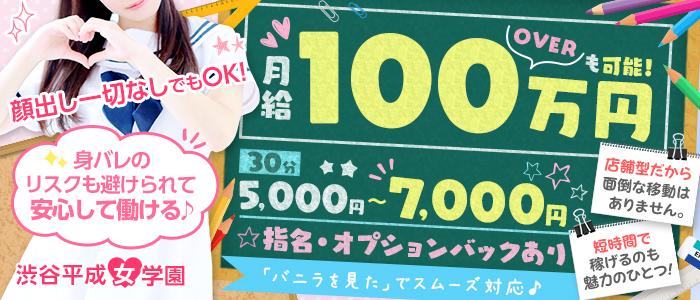 渋谷平成女学園の求人画像