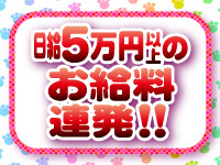 日給5万円以上★