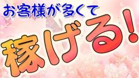 COCO GROUP 姫路東店に在籍する女の子のお仕事紹介動画
