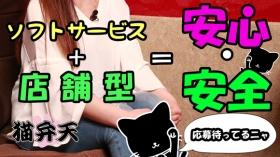 猫弁天の求人動画