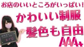 AAA+(トリプルエープラス)に在籍する女の子のお仕事紹介動画
