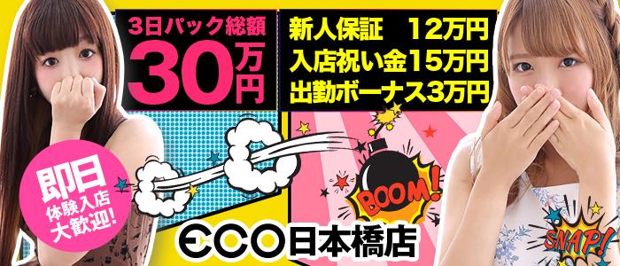 エコ 日本橋店の体験入店求人画像