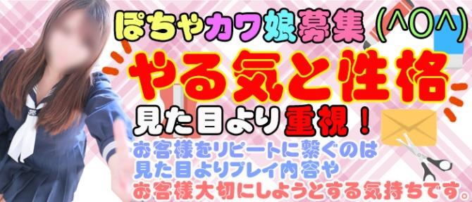 私立にじいろ女学園~横浜校~のぽっちゃり求人画像