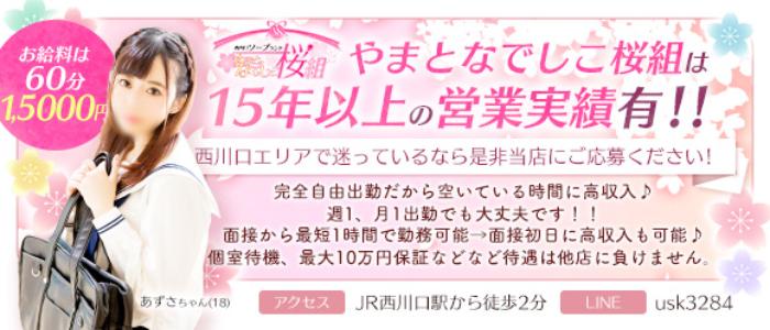やまとなでしこ桜組の求人画像