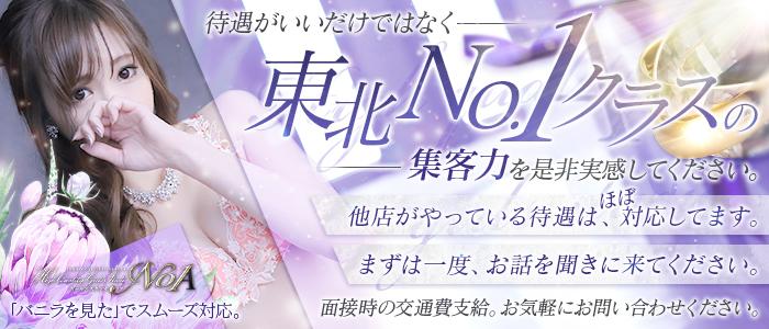ノア(NOA)の求人画像