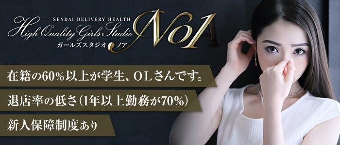 未経験・ノア(NOA)
