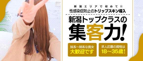 出稼ぎ・CECIL 新潟店