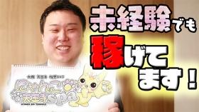 にゃんこspa 天王寺店のバニキシャ(スタッフ)動画