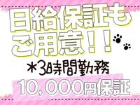 にゃんこスパ 神戸三宮店で働くメリット3
