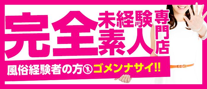 体験入店・完全素人 o7o7
