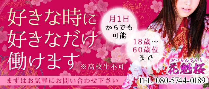花魁桜 盛岡店