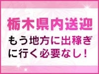 栃木県内送迎あり!