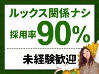安心の採用率90%★のアイキャッチ画像