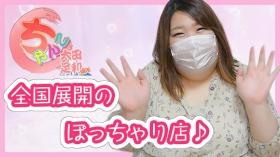太田・足利ちゃんこのスタッフによるお仕事紹介動画