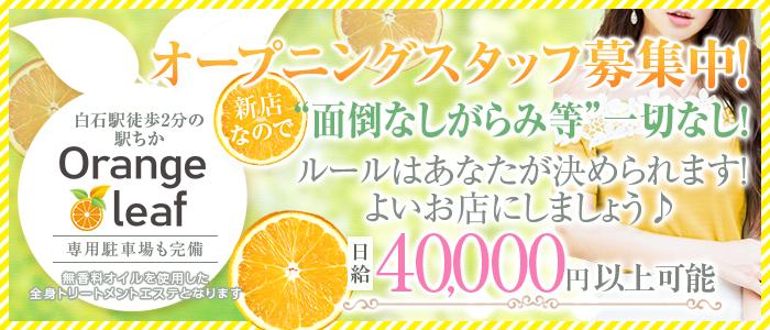 オレンジ リーフの求人画像