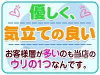 Otocha~大人のおもちゃセールスレディ~