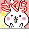 桜の面接人画像
