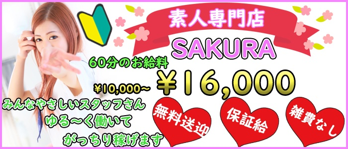 桜の求人画像