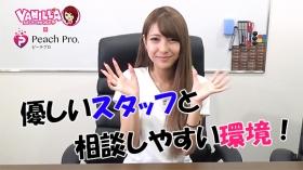 ピーチプロ西日本支社のバニキシャ(女の子)動画