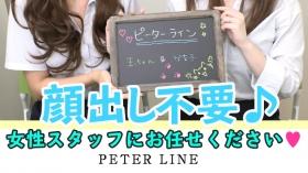 ピーターラインのスタッフによるお仕事紹介動画