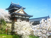 観光気分で奈良へ出稼ぎ♪