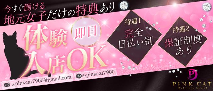 PINK CATの体験入店求人画像