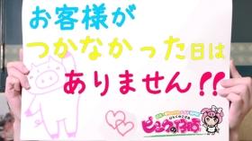 ピンクの仔豚のバニキシャ(女の子)動画