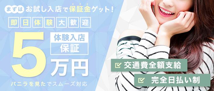 プラチナ姫路の体験入店求人画像