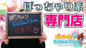 ぽっちゃりcollection