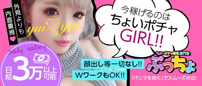 ちょいポチャ巨乳専門店(ぷっちょ)の求人画像