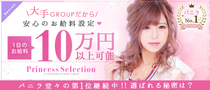 プリンセスセレクション茨木・枚方店の体験入店求人画像
