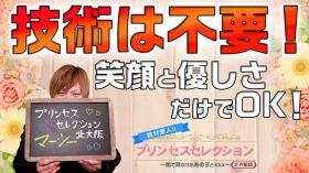 プリンセスセレクション北大阪の求人動画